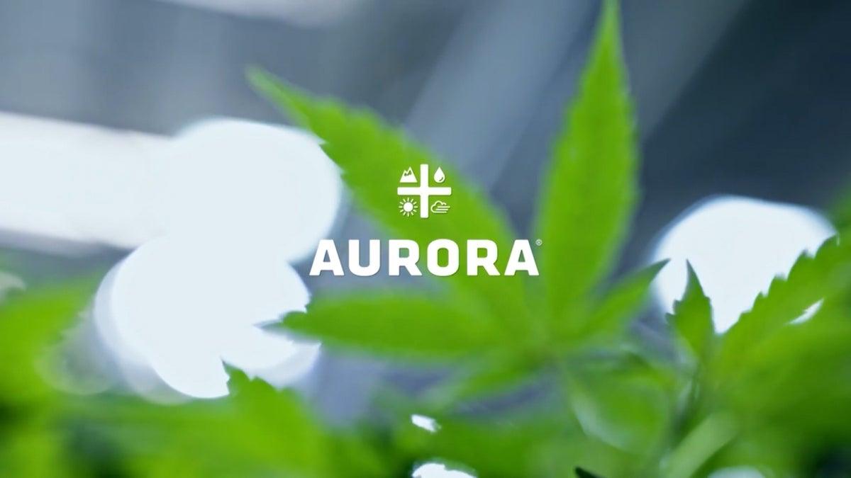 Aurora Cannabis CEO Talks Earnings, Cannabis Market, and More