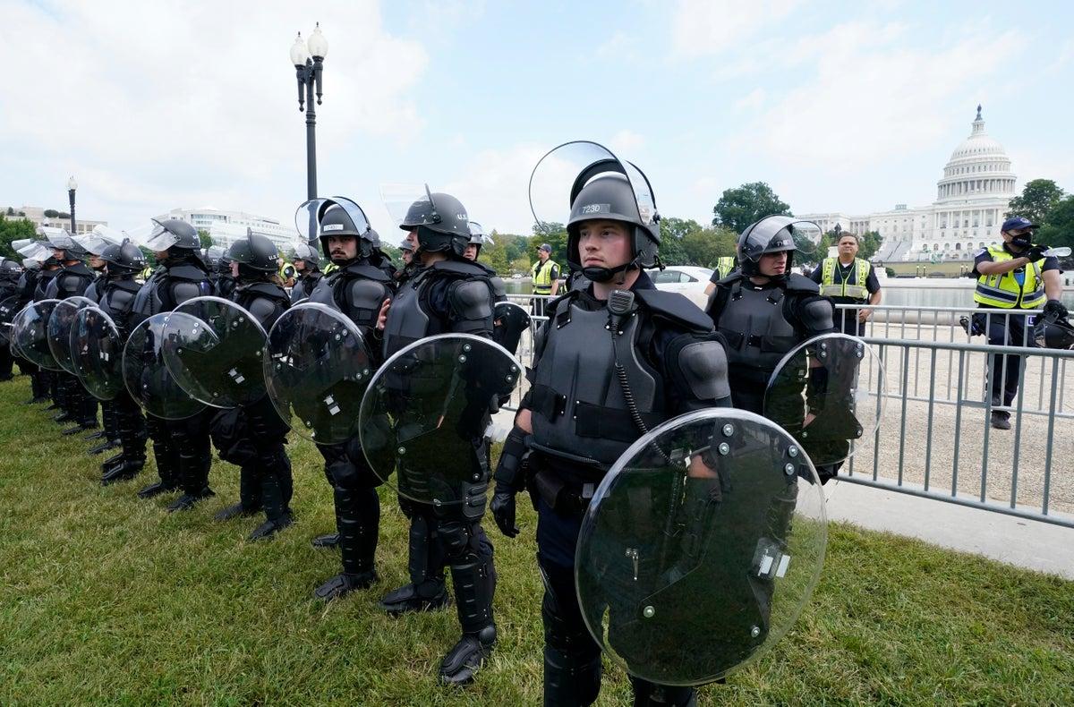 Capitol police(AP Photo/Alex Brandon)