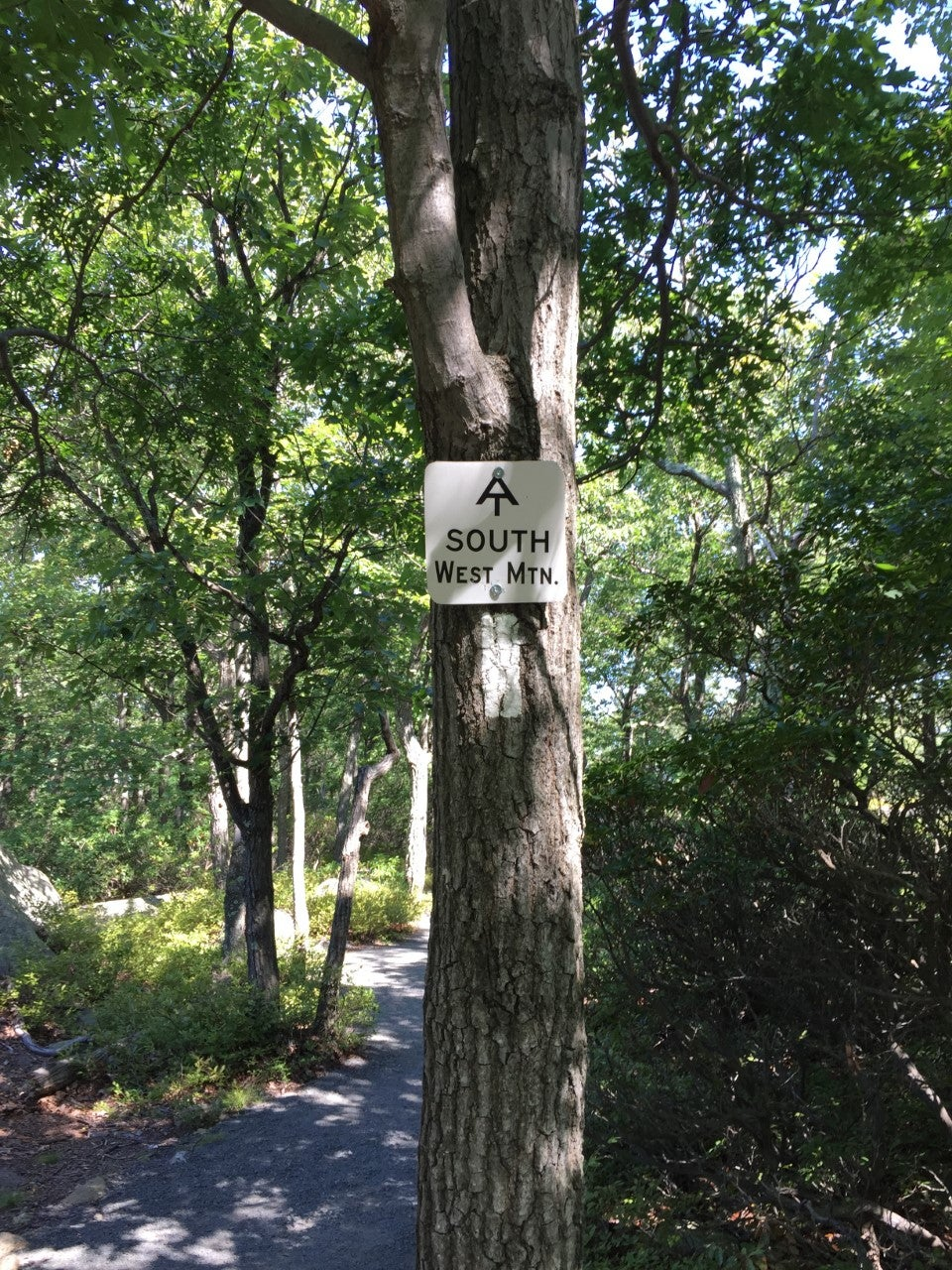 Appalachian Trail at Bear Mountain State Park (Photo: Brian Heyman, News 12)
